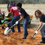 National Day of Service: MLK Day Project Ideas For College Students